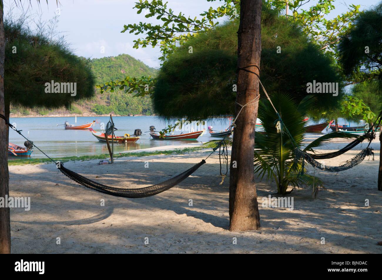 Hammocks on the beach - Hammocks On The Beach In Chaloklum Koh Phangan Thailand