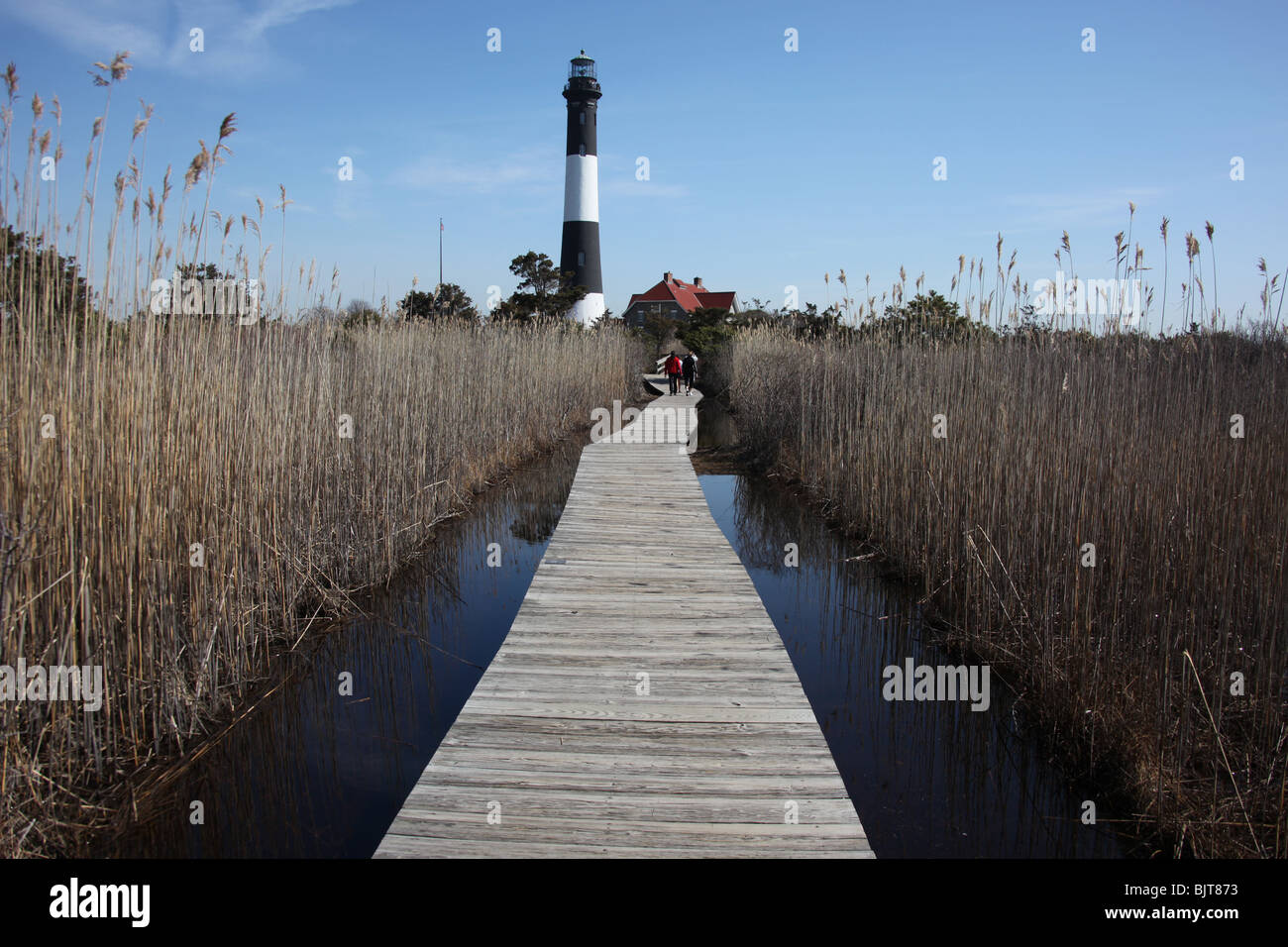 Boardwalk Through Marshlands To The Fire Island Lighthouse Robert Moses State Park New York C Katharine Andriotis