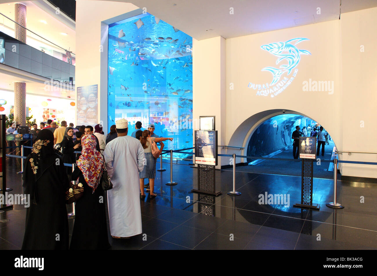 Dubai Aquarium and Underwater Zoo, saltwater aquarium in Dubai Mall Stock Photo, Royalty Free