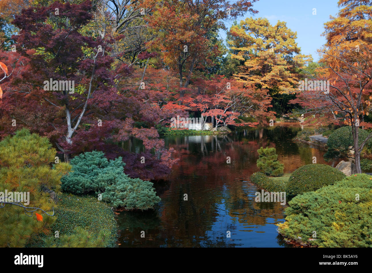 Fall Colors In A Garden Japanese Garden Fort Worth Texas Usa Stock Photo Royalty Free Image