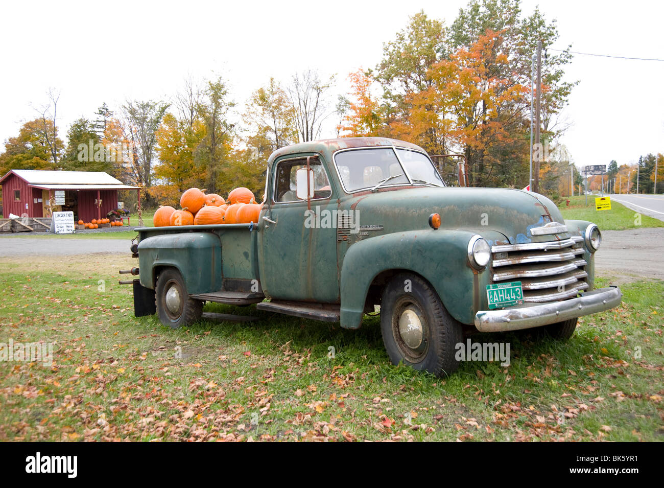 Pumpkins for sale in an old Chevrolet pickup truck at a roadside ...