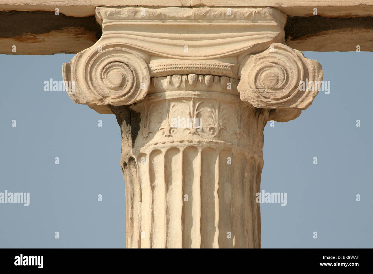 the important structures in the acropolis in the ionic order Compare and contrast greek and roman architecture  located on the acropolis in athens made 2400 years ago  most important feature in the ionic order which .