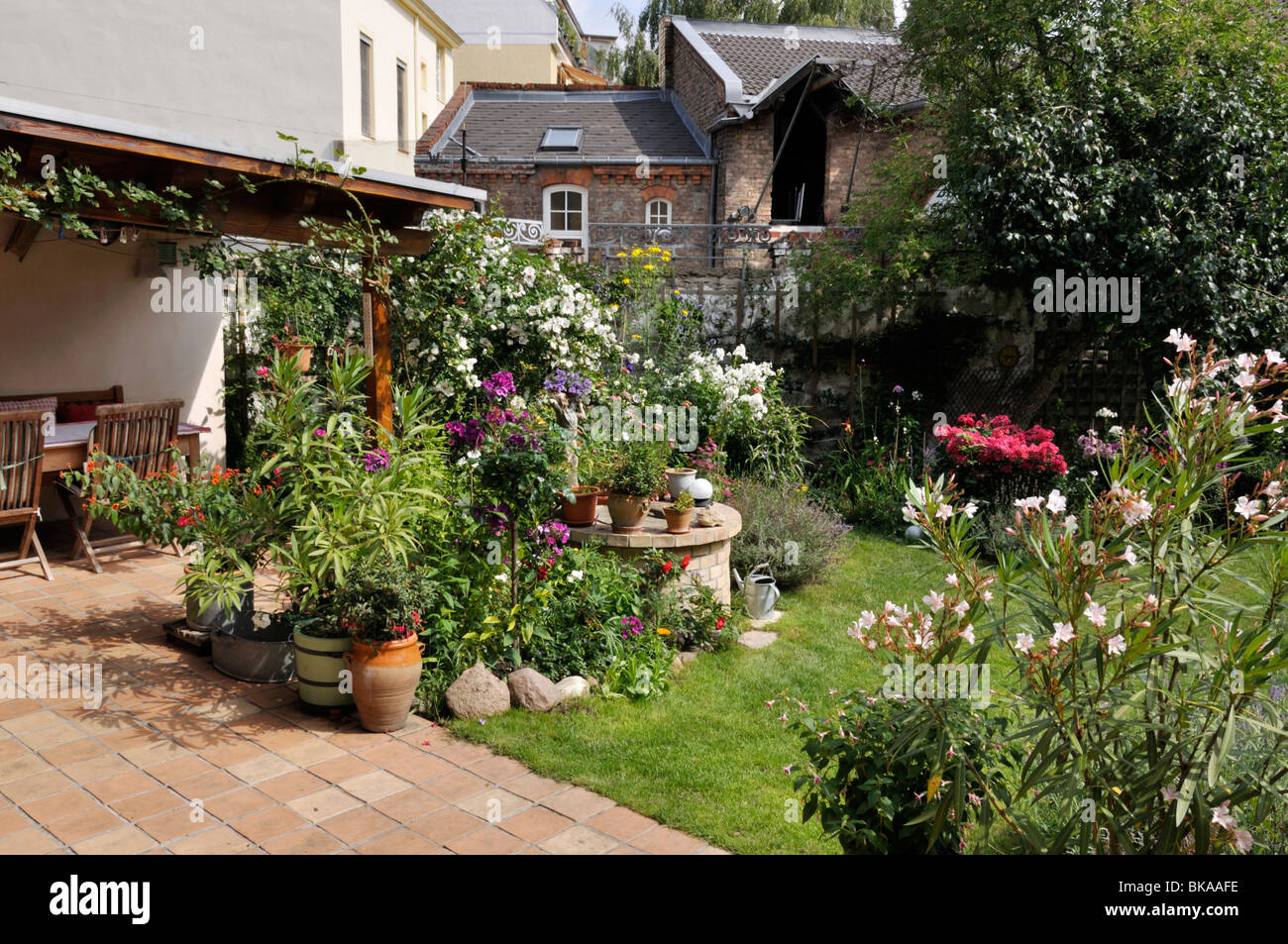 Backyard garden with perennial beds lawn and terrace with for Terrace garden plants