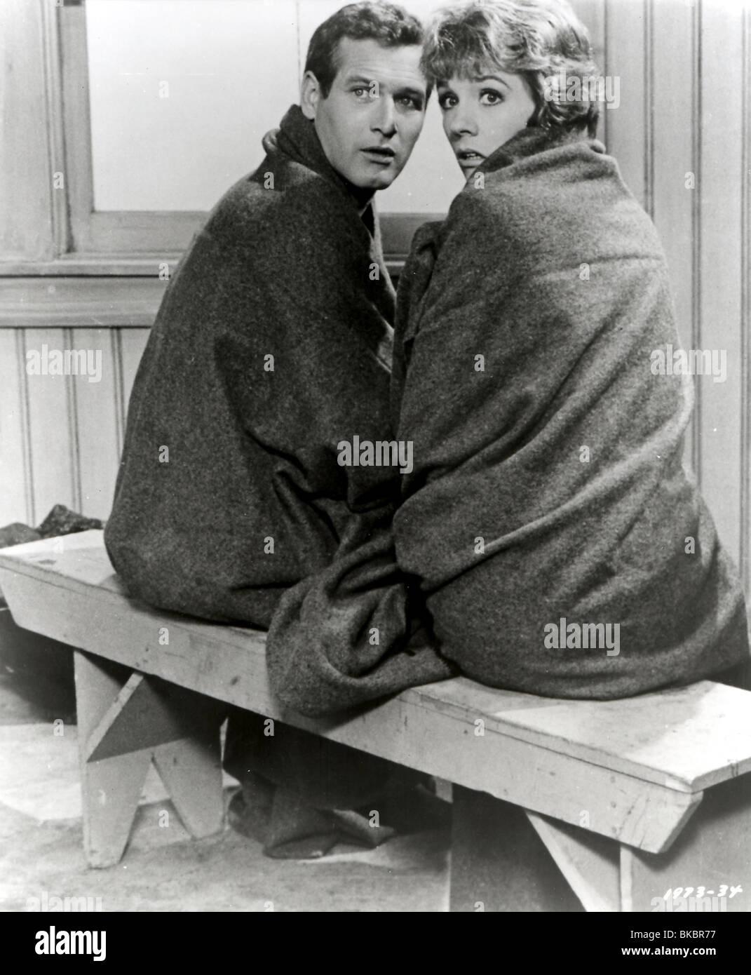 Torn curtain julie andrews - Stock Photo Torn Curtain 1966 Paul Newman Julie Andrews Trct 005p L