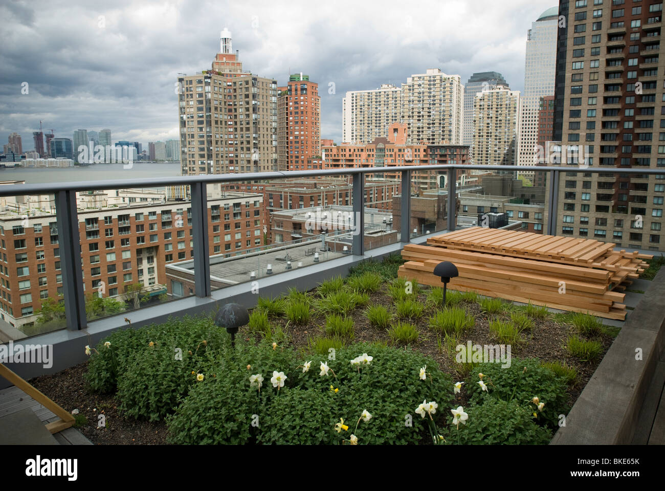 Captivating A Green Roof On The Visionaire, A Green Condominium In Battery Park City In New  York