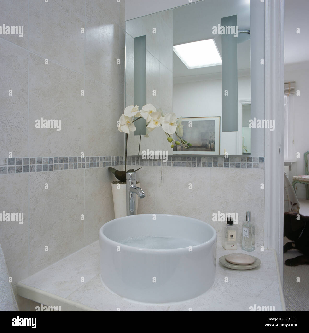 Mirror above circular bowl basin on vanity unit with white orchid ...