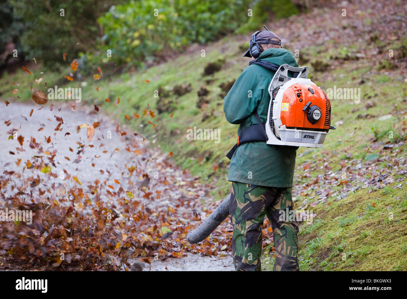 A Gardener Using A Leaf Blower In A Garden Uk Stock Photo