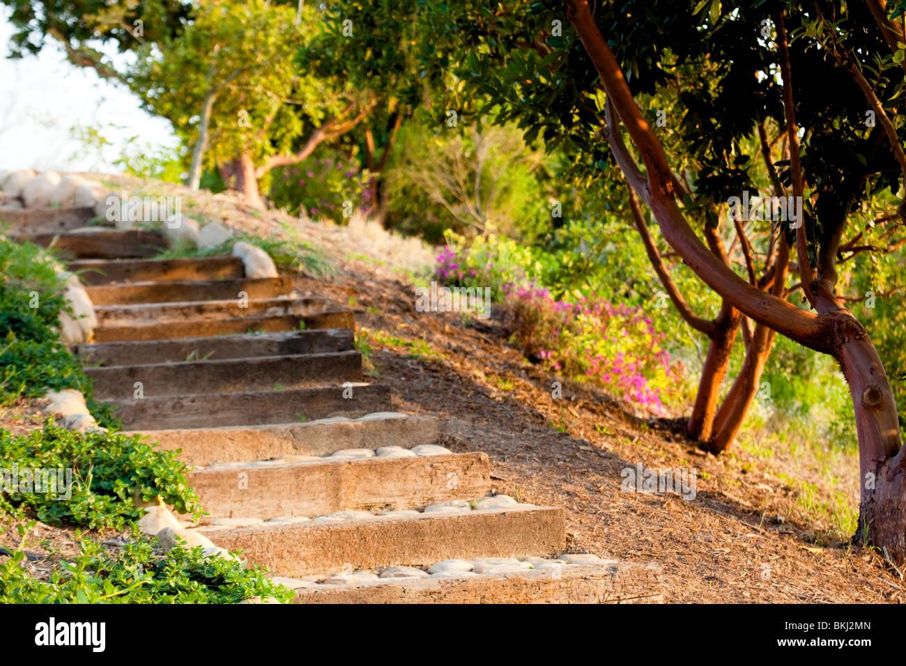 Outdoor Steps Outdoor Steps Park Mulch Stone Landscape Pink Flower Natural