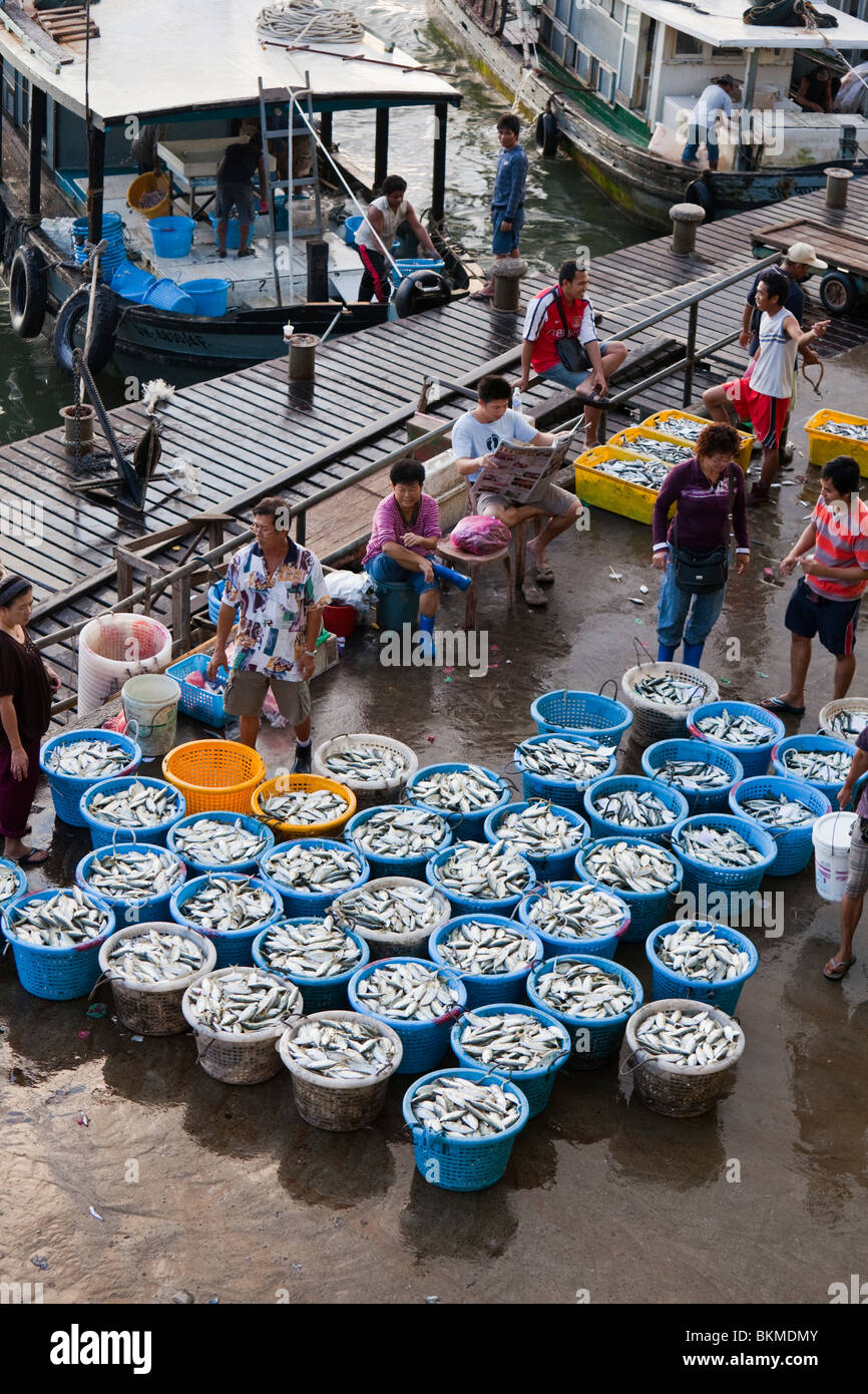 Morning fish market on the waterfront in sandakan sabah for Giovanni s fish market