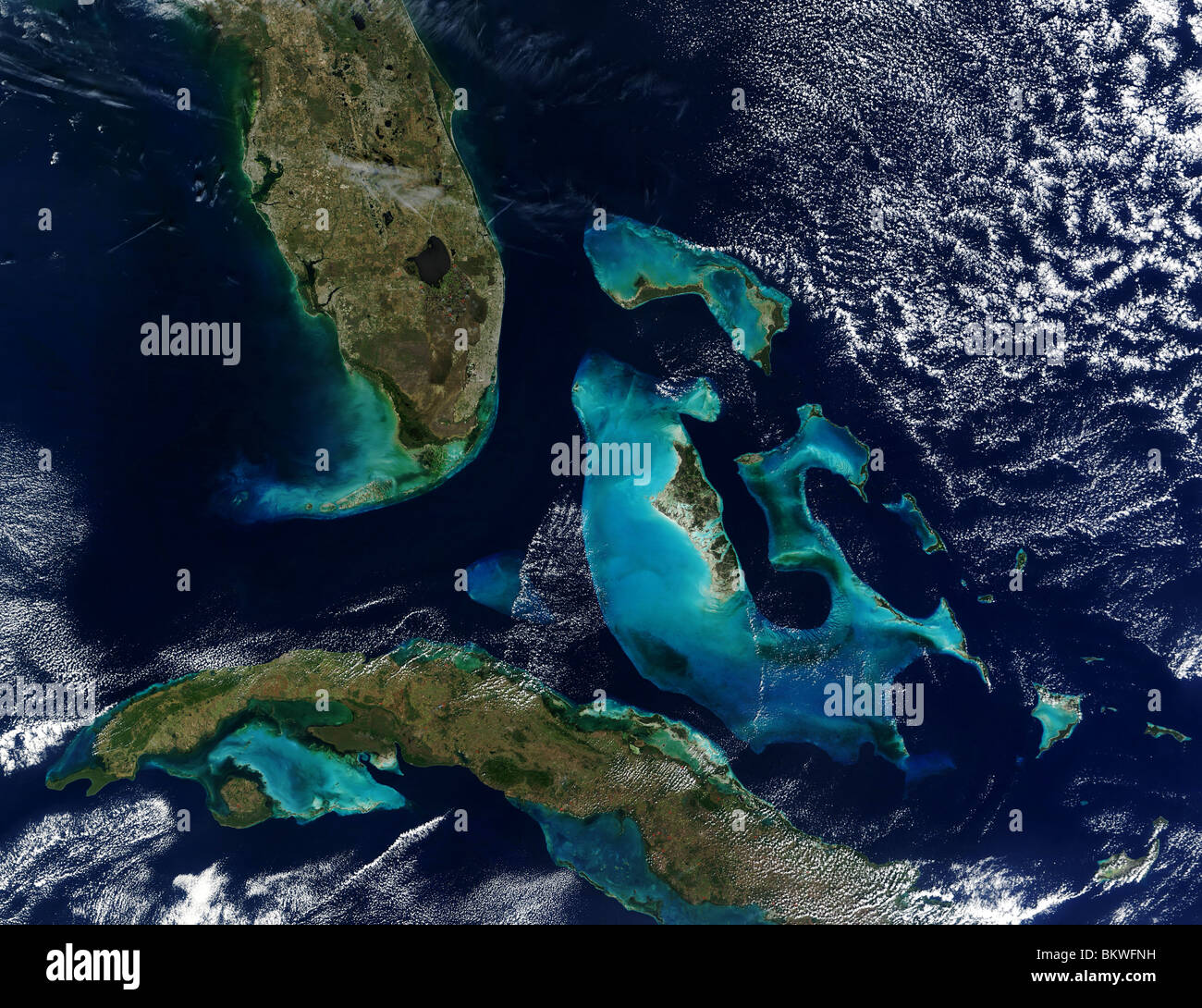 Satellite view of Coral Reefs The Great Bahama Bank and Little