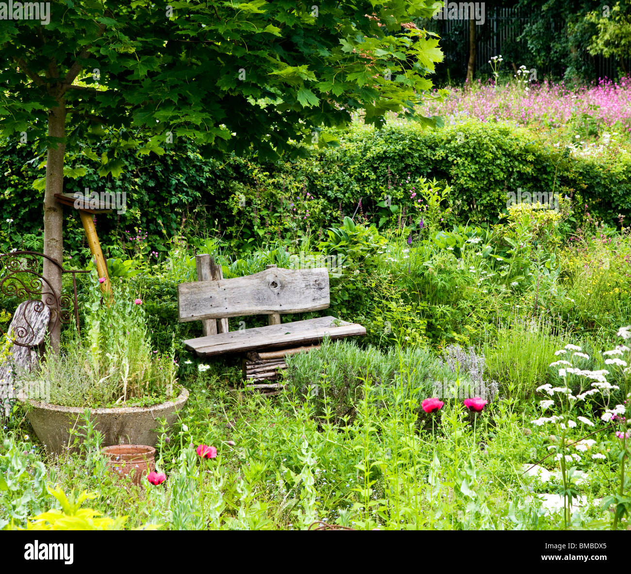 A Charming Rustic Corner Of The Cottage Garden In The