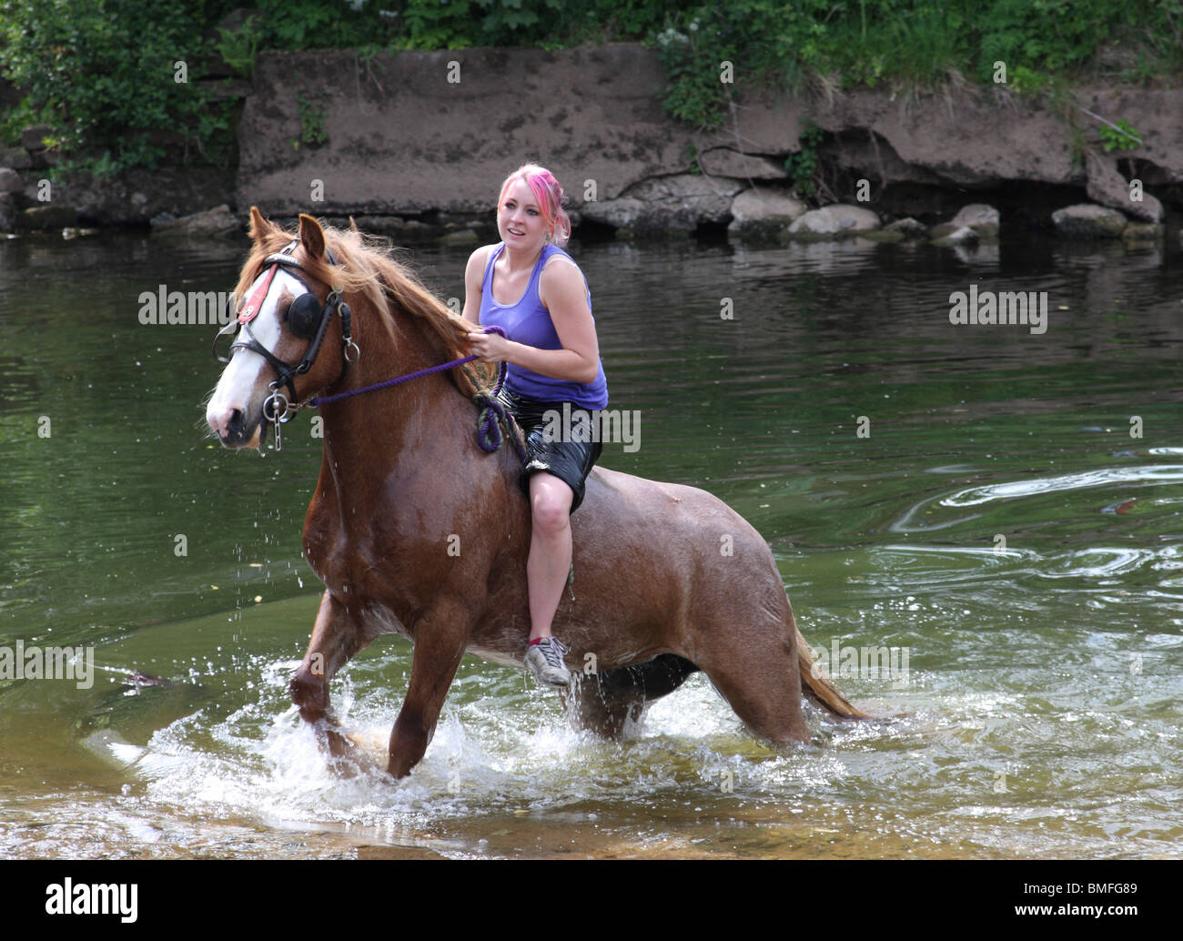 A gypsy girl swimming a horse at the Appleby Horse Fair Stock ...