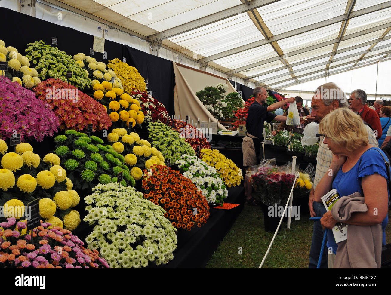 the flower tent at the royal cornwall show wadebridge cornwall uk : flower tent - memphite.com