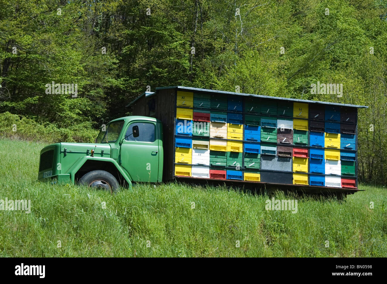 Where To Buy A Food Truck In Canada