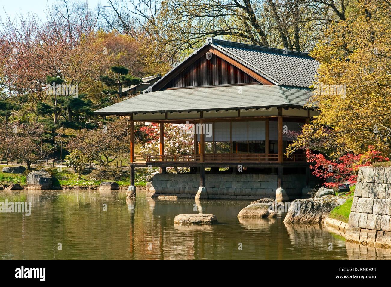 Japanese tea house at pond in japanese garden hasselt for Japanese garden house