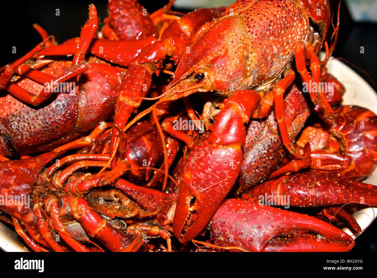 crawfish boil stock photos u0026 crawfish boil stock images alamy