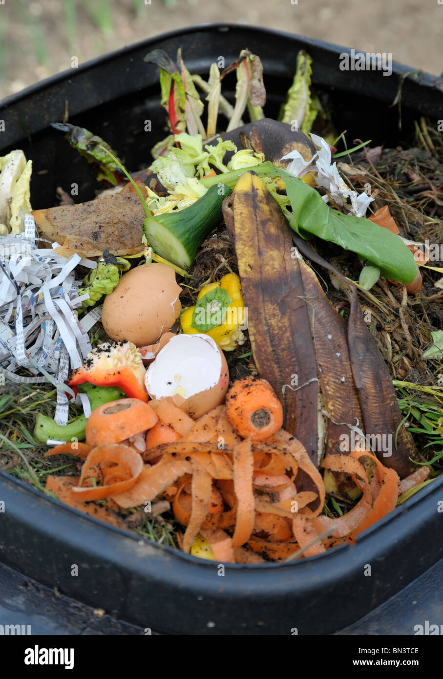 Vegetable And Fruit Waste In A Garden Compost Bin Stock Photo