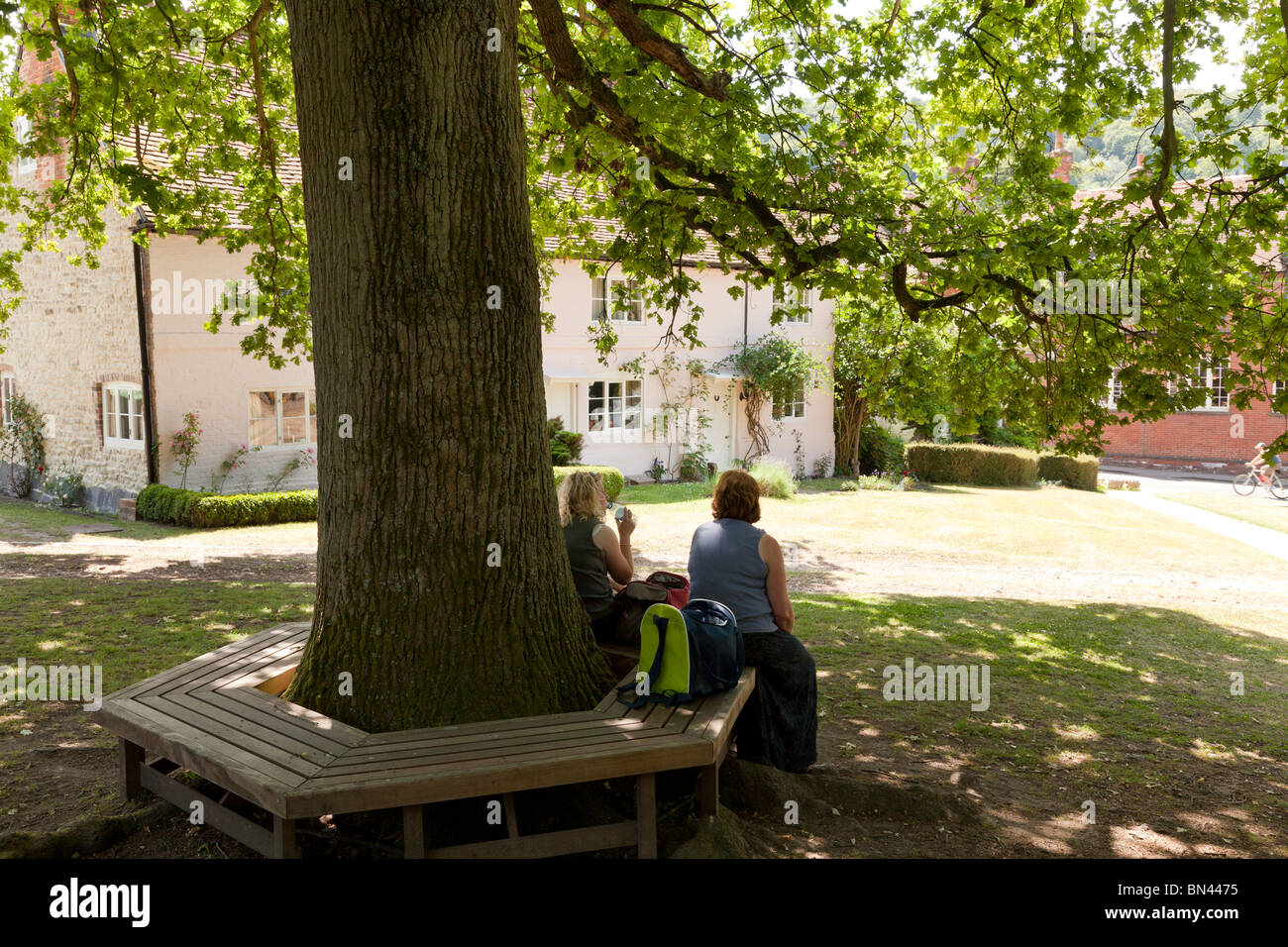 People Resting On Tree Bench Under The Shade Of An Oak