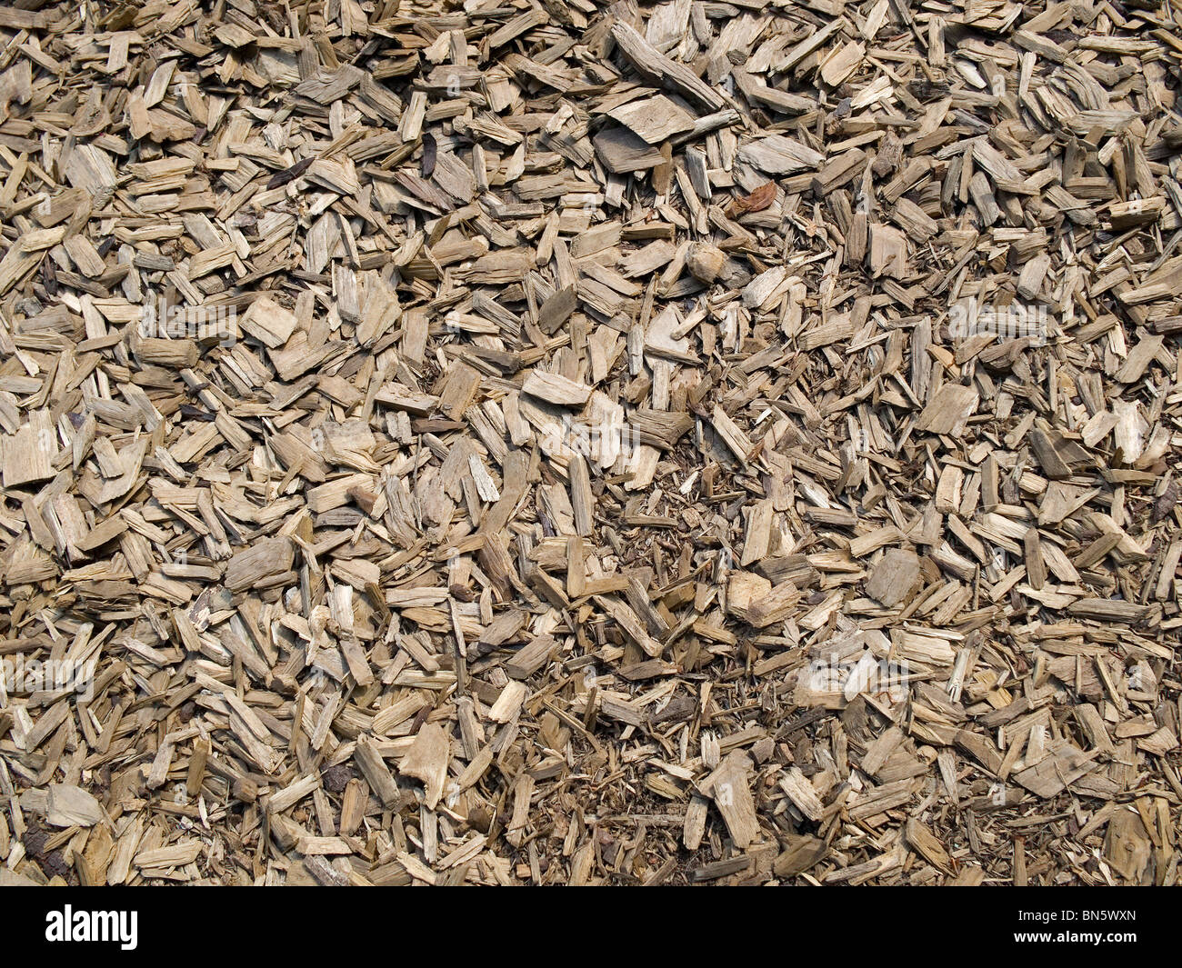 Wood chip and bark ground cover stock photo royalty free