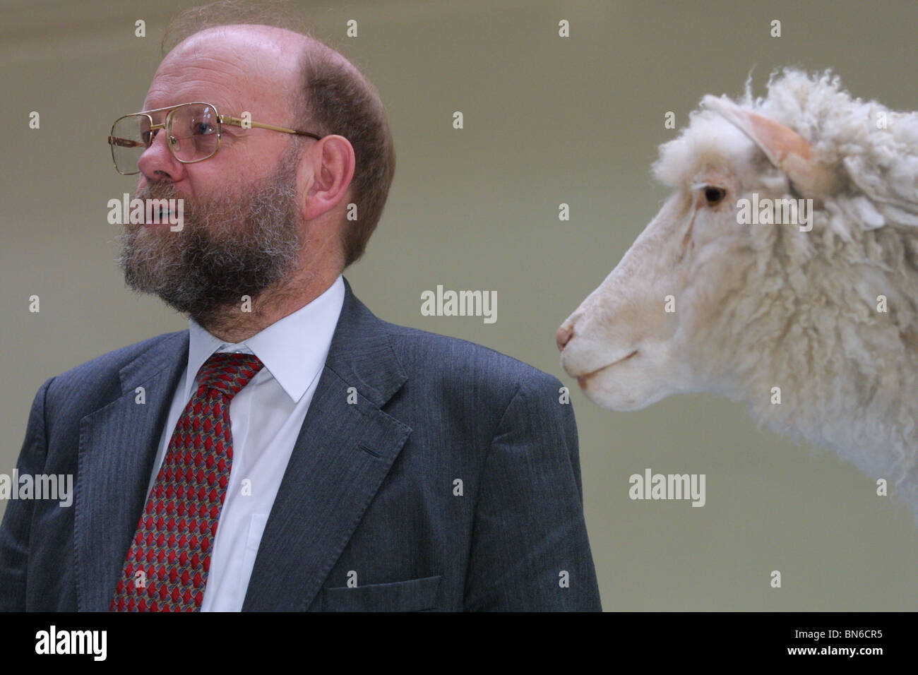an analysis of the cloning of a sheep named dolly and ian willmuts technique The cloning of dolly and other ian wilmut and colleagues at ppl therapeutics/the roslin institute in it took 277 attempts to get 1 cloned sheep - dolly.