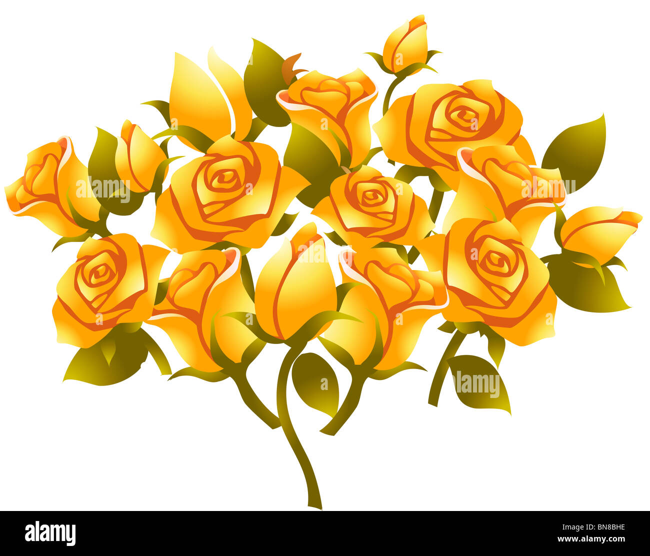 illustration drawing of yellow rose flower in white