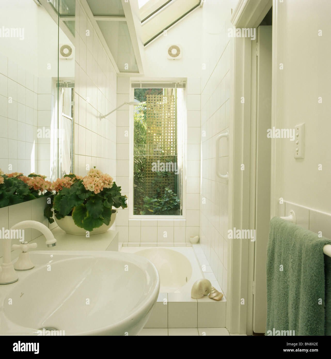 Narrow bathroom windows - Pink Flowering Houseplant On Basin In Small Modern White Tiled Bathroom With Tall Window Above