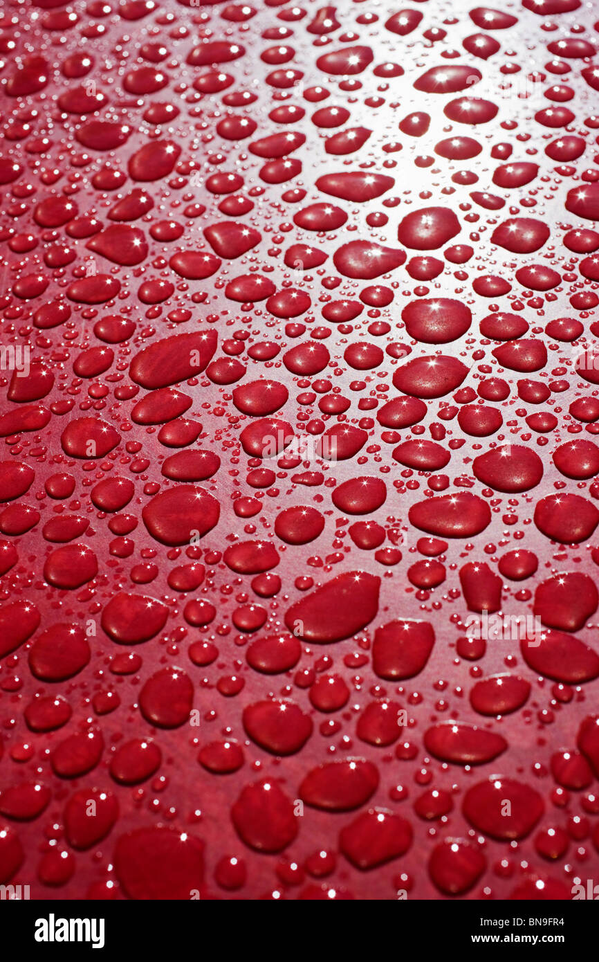 Close Up Macro Photograph Of Rain Drops On A Red Table