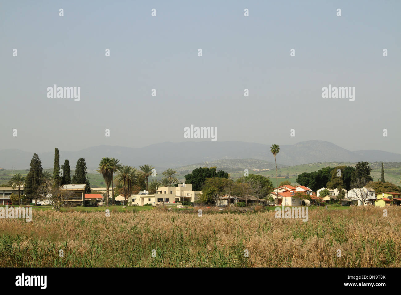 Ginosar Israel  city photo : Israel, Kibbutz Ginosar By The Sea Of Galilee Stock Photo, Royalty ...