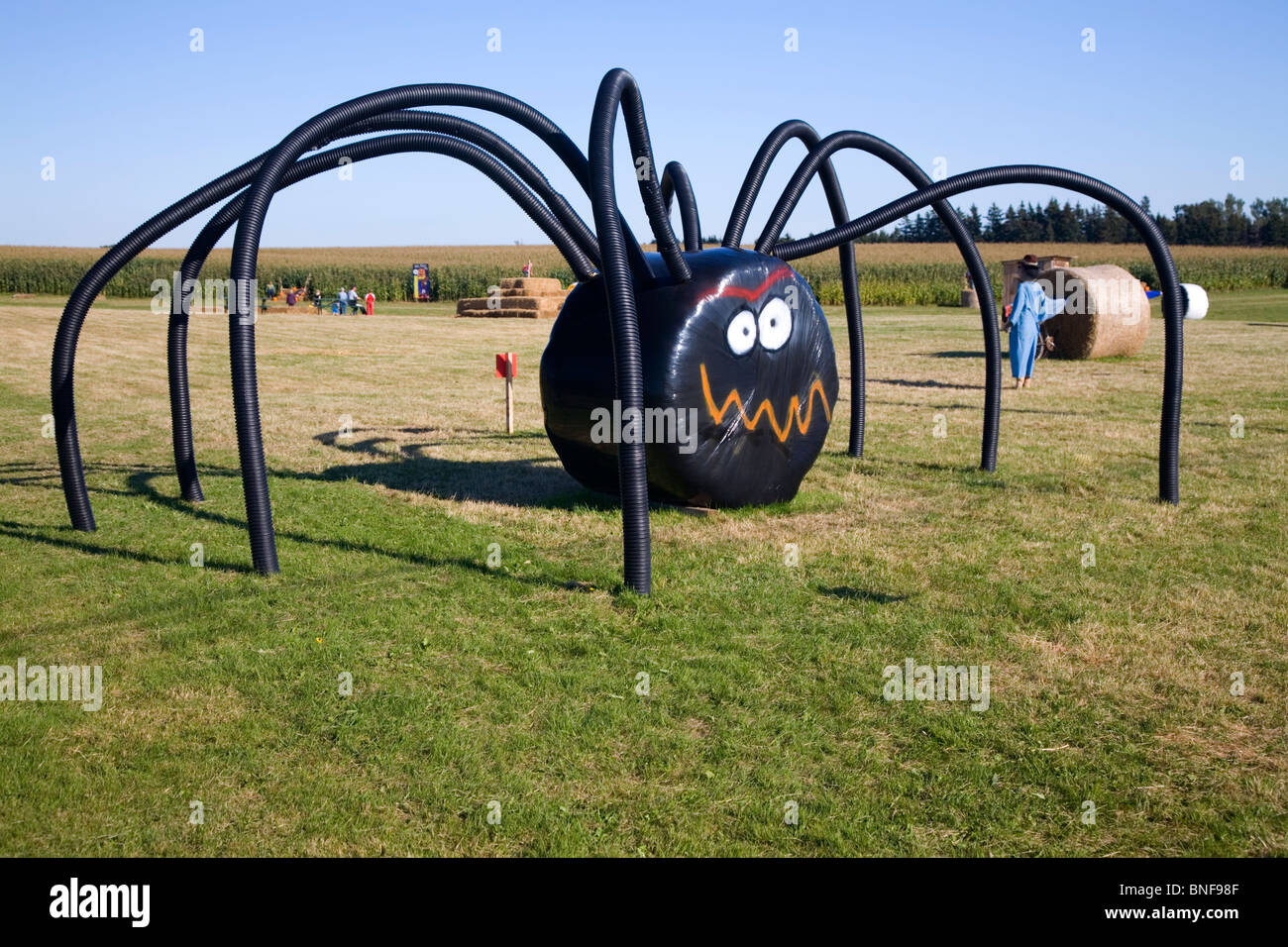 large halloween spider decoration made with a large covered hay bale and tubing on a farm on prince edward island canada