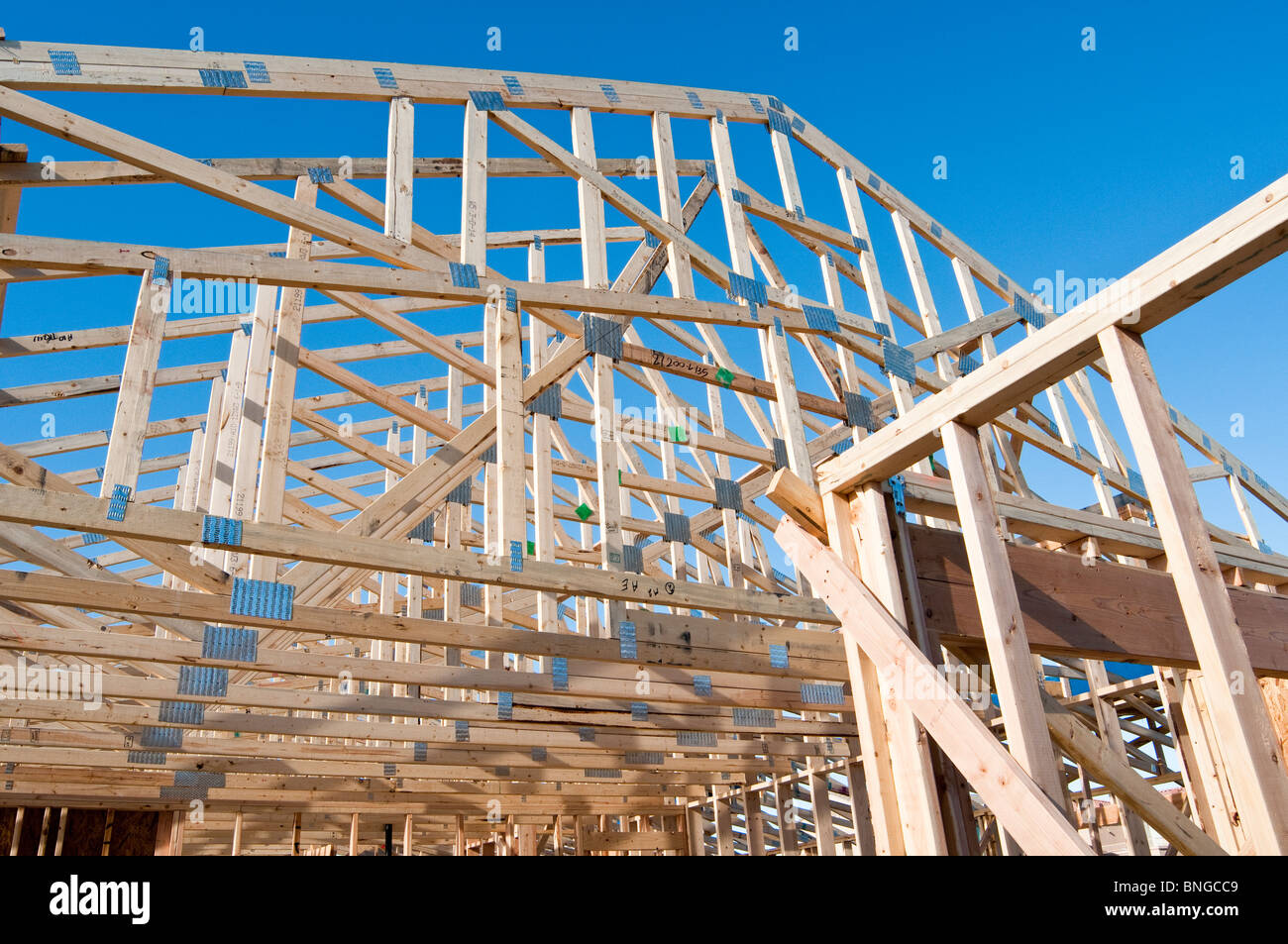 detail of the construction of a new wood frame house in arizona - Wood Frame House