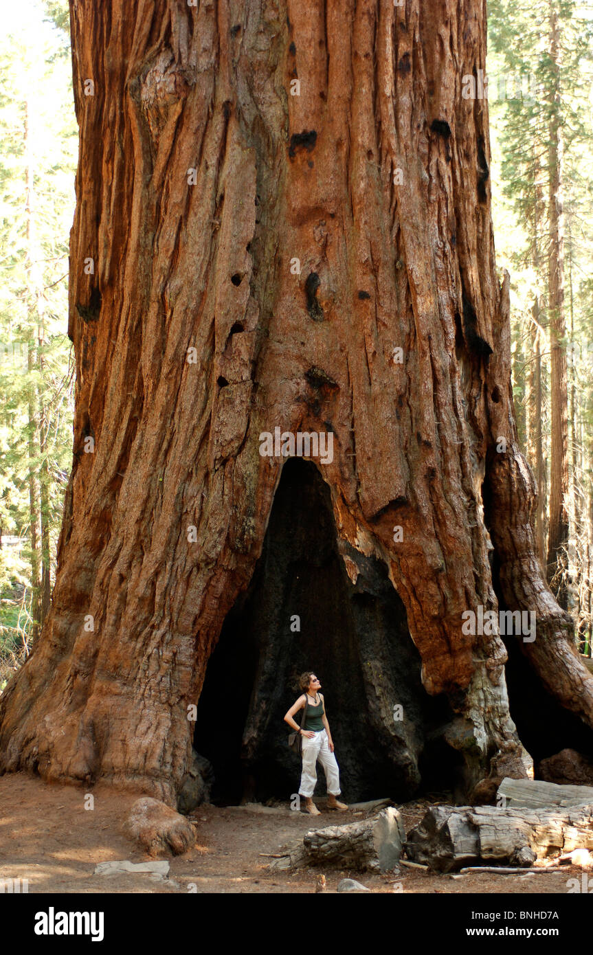christian single women in sequoia national park Matchcom, the leading online dating resource for singles search through thousands of personals and photos go ahead, it's free to look.