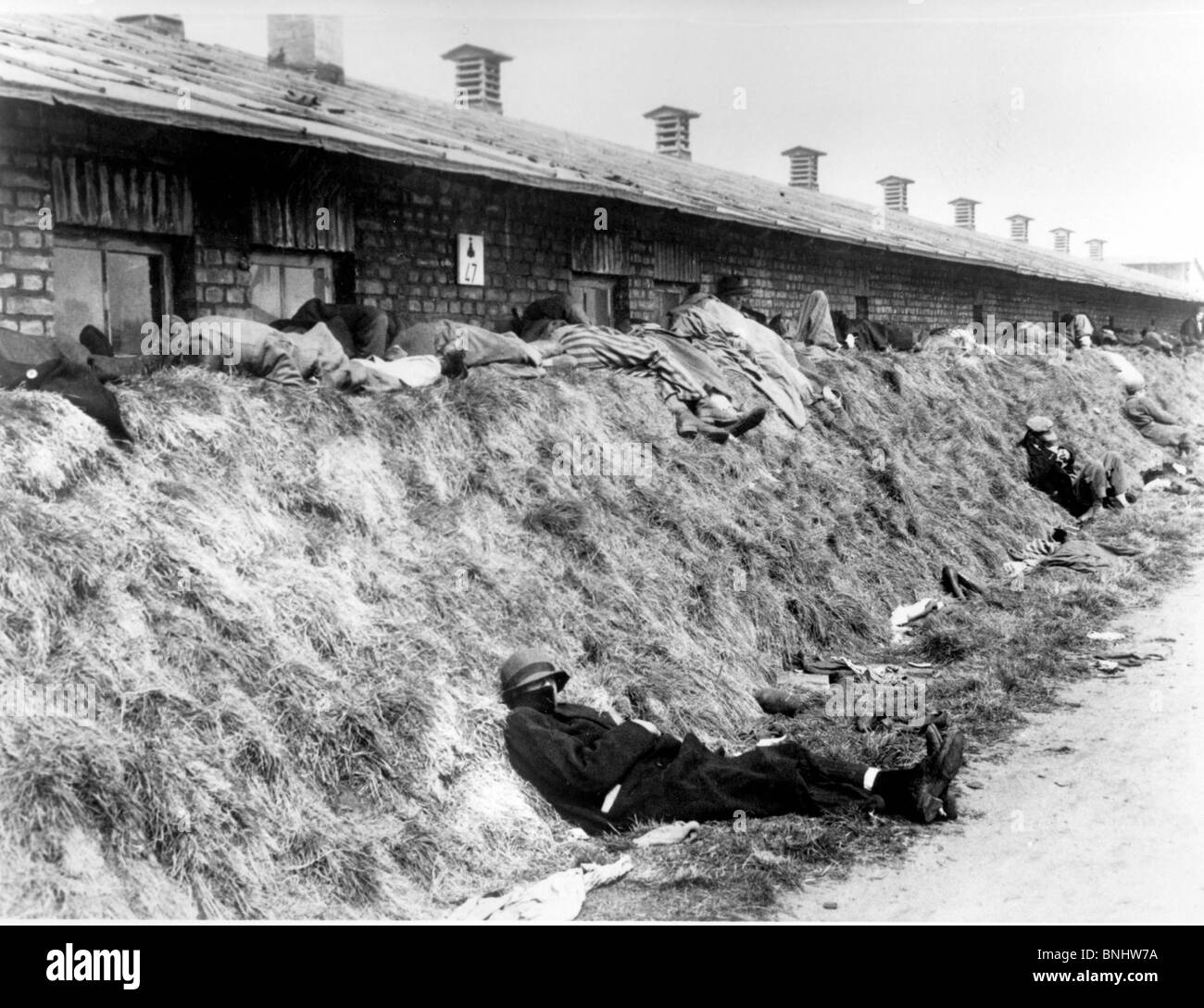 a history of the nazi concentration camps Concentration camps are synonymous with a center of torture, an essence of evil and horror here is a glimpse into some of the nightmarish conditions that existed in concentration camps.