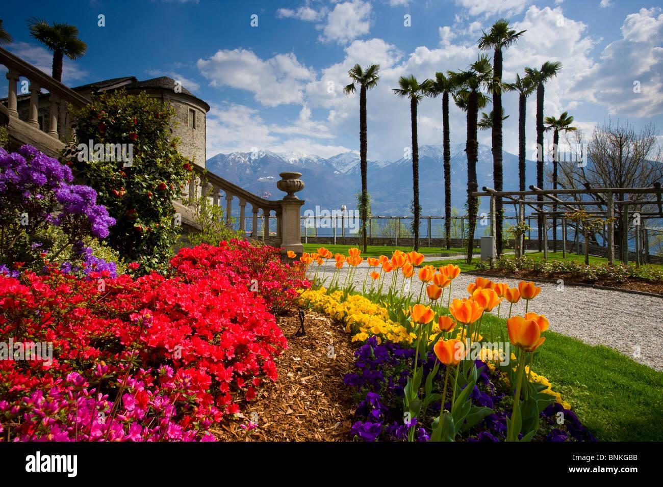 Minusio Switzerland  city photos : minusio switzerland canton ticino park garden flowers tulips ...