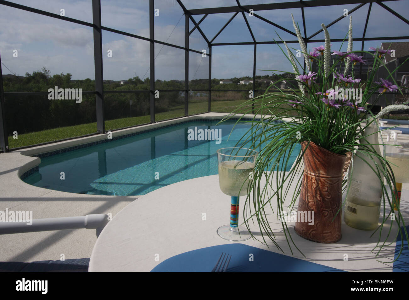 Private swimming pool and patio area with insect mesh for Private swimming pool