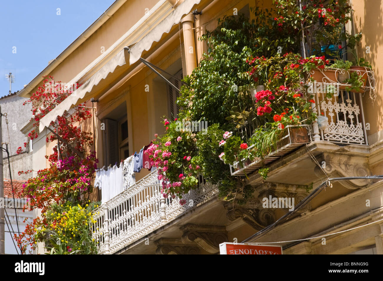 Traditional Style Apartment Building With Balcony Plants