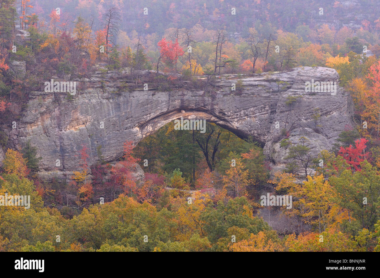 Natural Arch Daniel Boone National Forest Whitley City