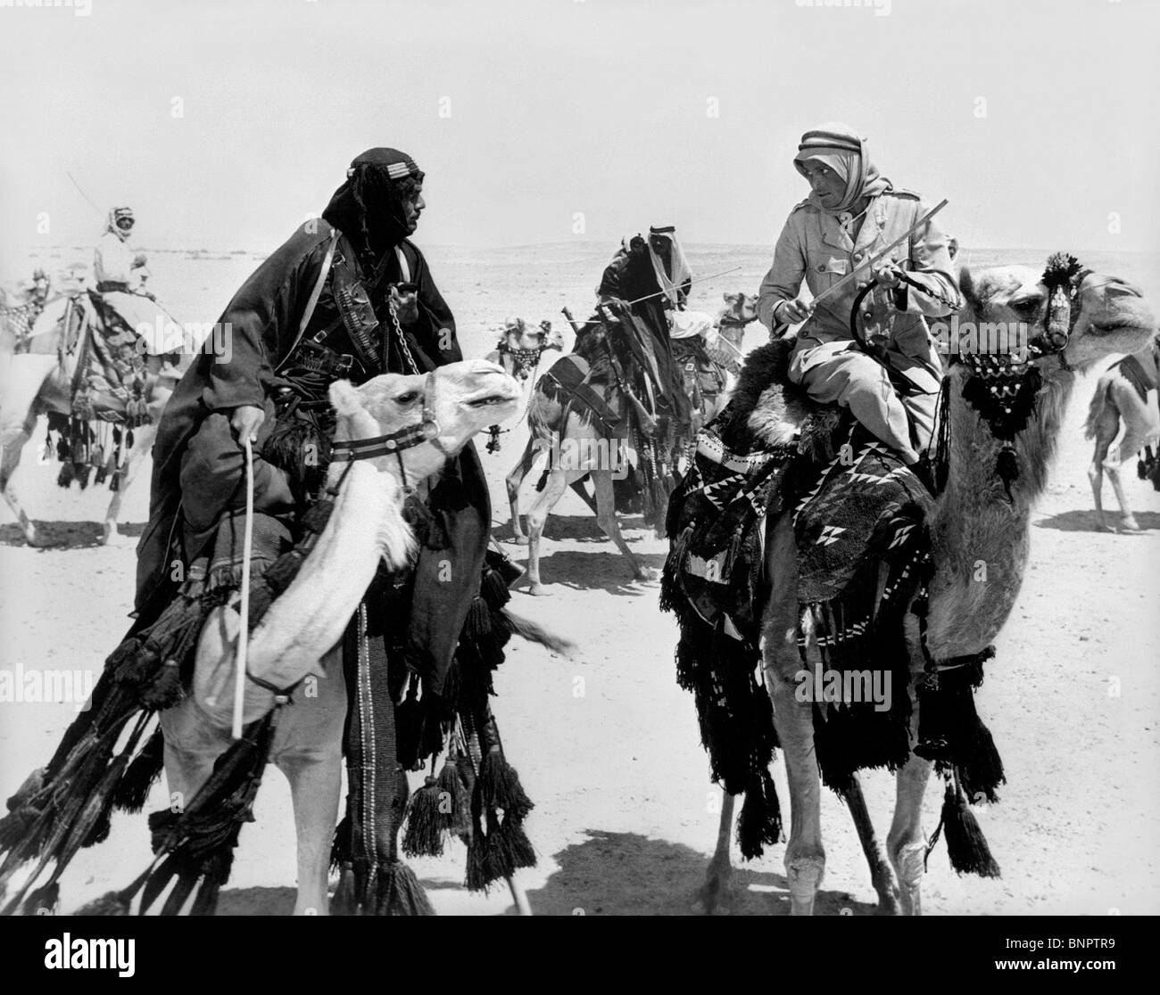 Lawrence Of Arabia David Lean: OMAR SHARIF & PETER O'TOOLE LAWRENCE OF ARABIA (1962 Stock