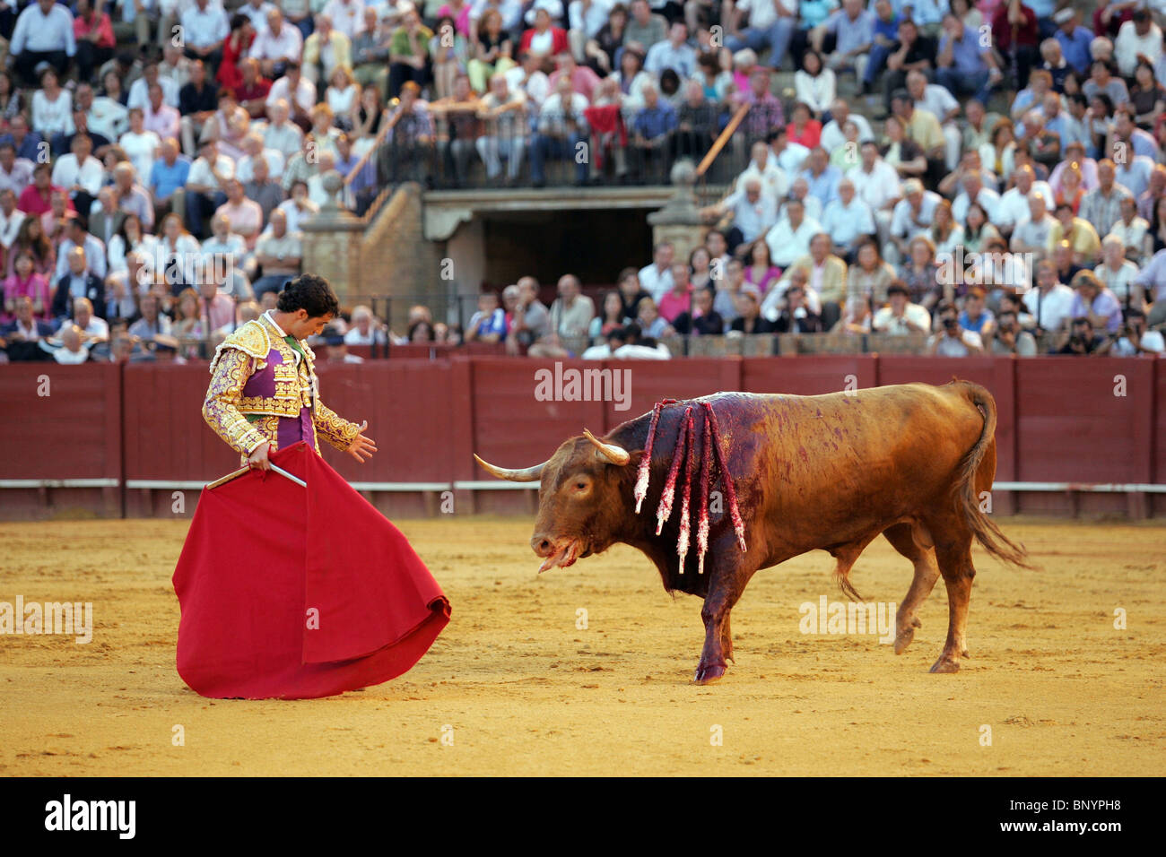 Vilches Spain  city images : Spanish Matador Luis Vilches At The Real Maestranza Bullring Stock ...