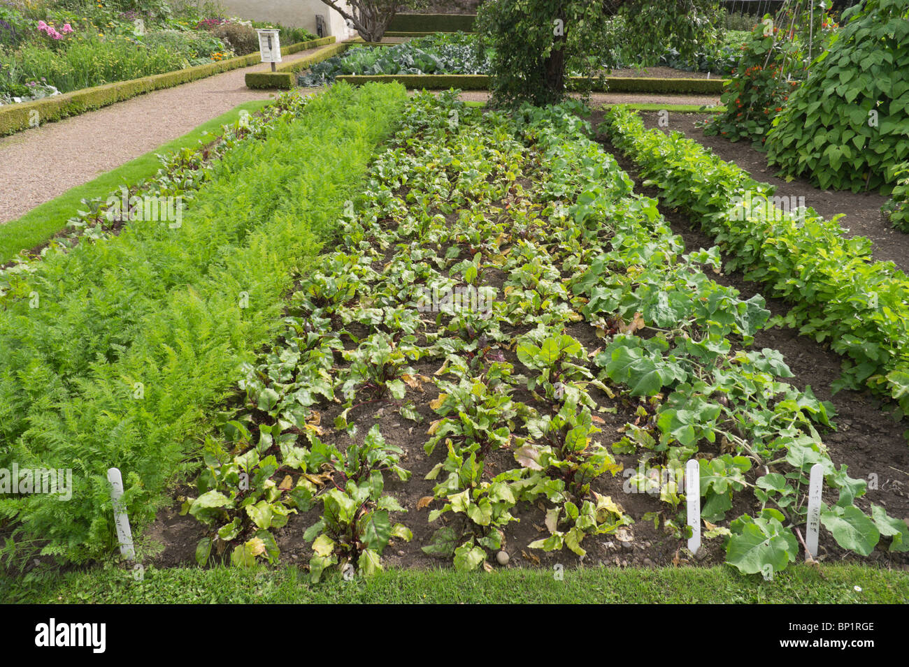Kitchen Gardens Harmony Gardens Melrose Scottish Borders Kitchen Garden Or