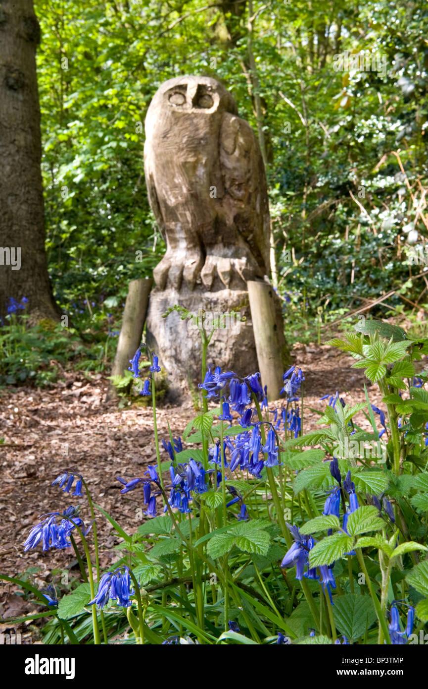 A carved tree stump owl amongst bluebells owly wood