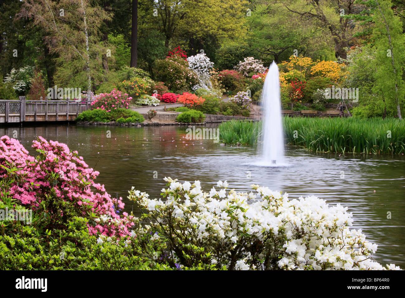 Portland oregon united states of america spring flowers for Garden fountains portland oregon