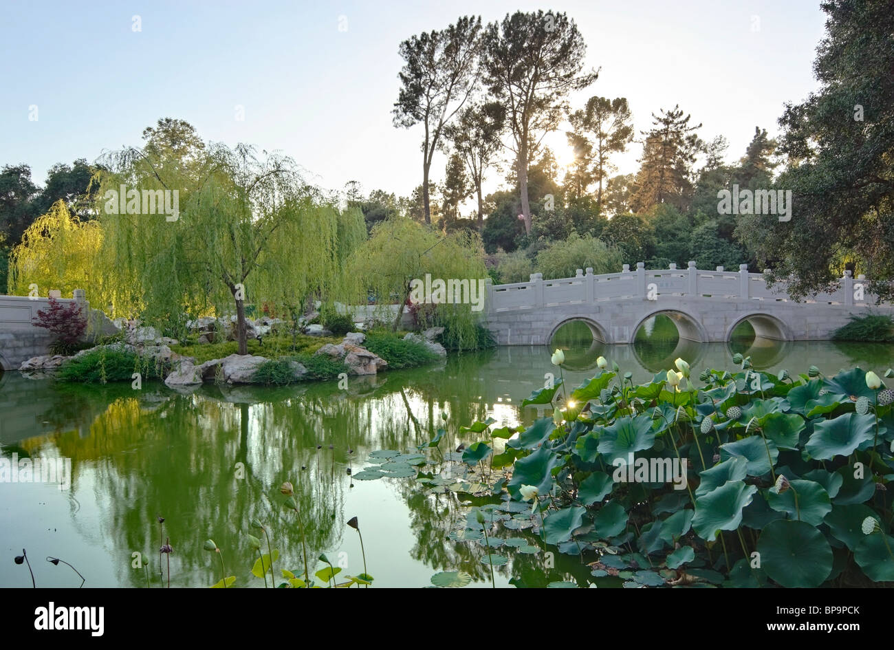 Beautiful Chinese Garden At The Huntington Library Stock Photo Royalty Free Image 30947971 Alamy