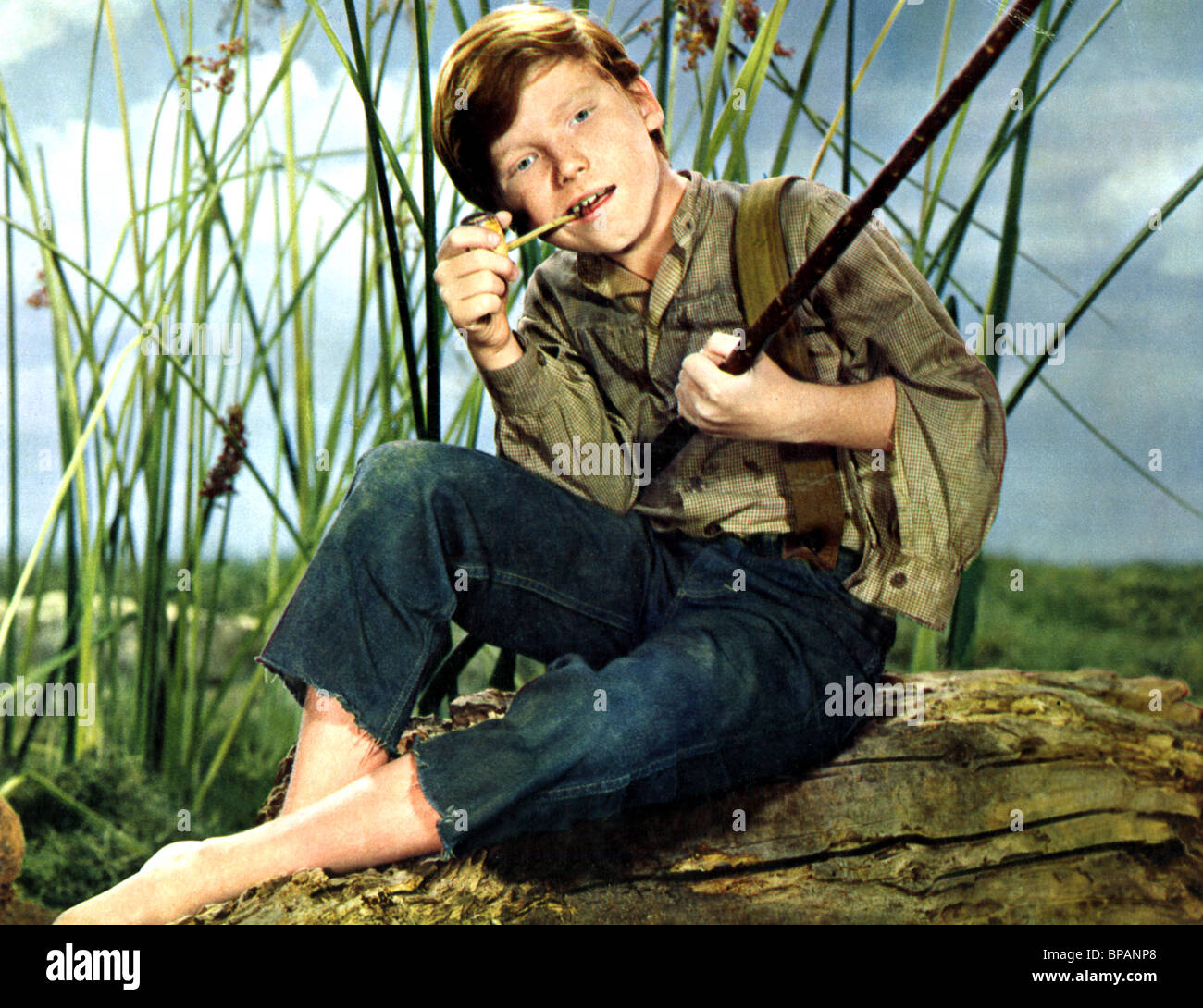 an analysis of the adventures of huckleberry finn The adventures of huckleberry finn study guide contains a biography of mark twain, literature essays, a complete e-text, quiz questions, major themes, characters, and a full summary and.