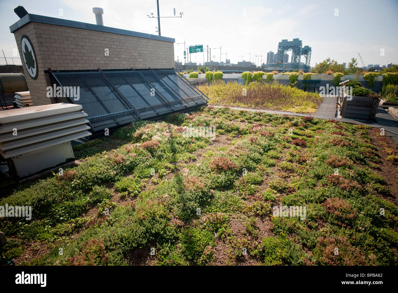 5 Boro Green Roof Garden On The Roof Of The NYC Parks And Recreation Dept.  Administration Building On Randallu0027s Island In NY