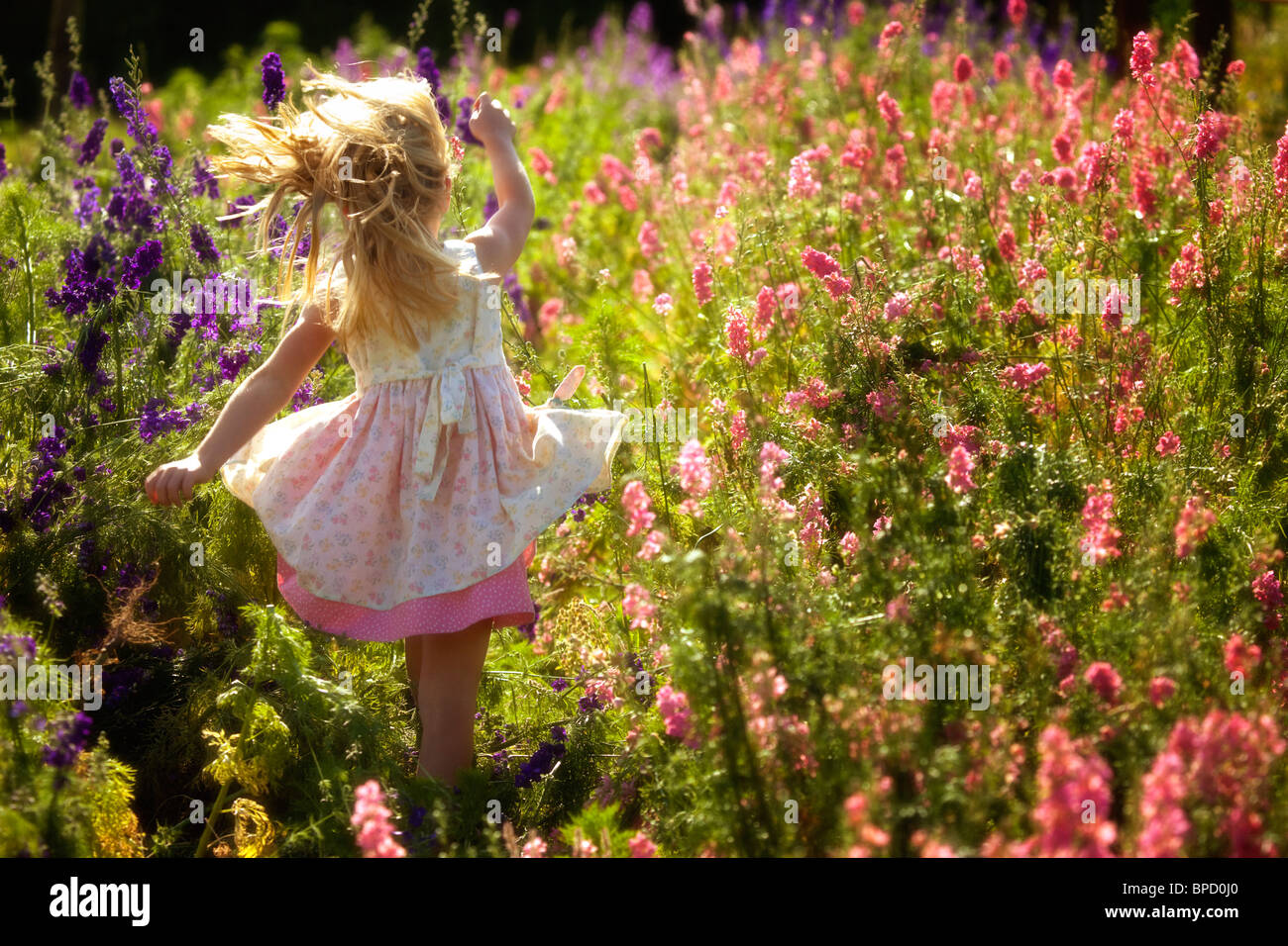 Young girl running in field of flowers Stock Photo ...