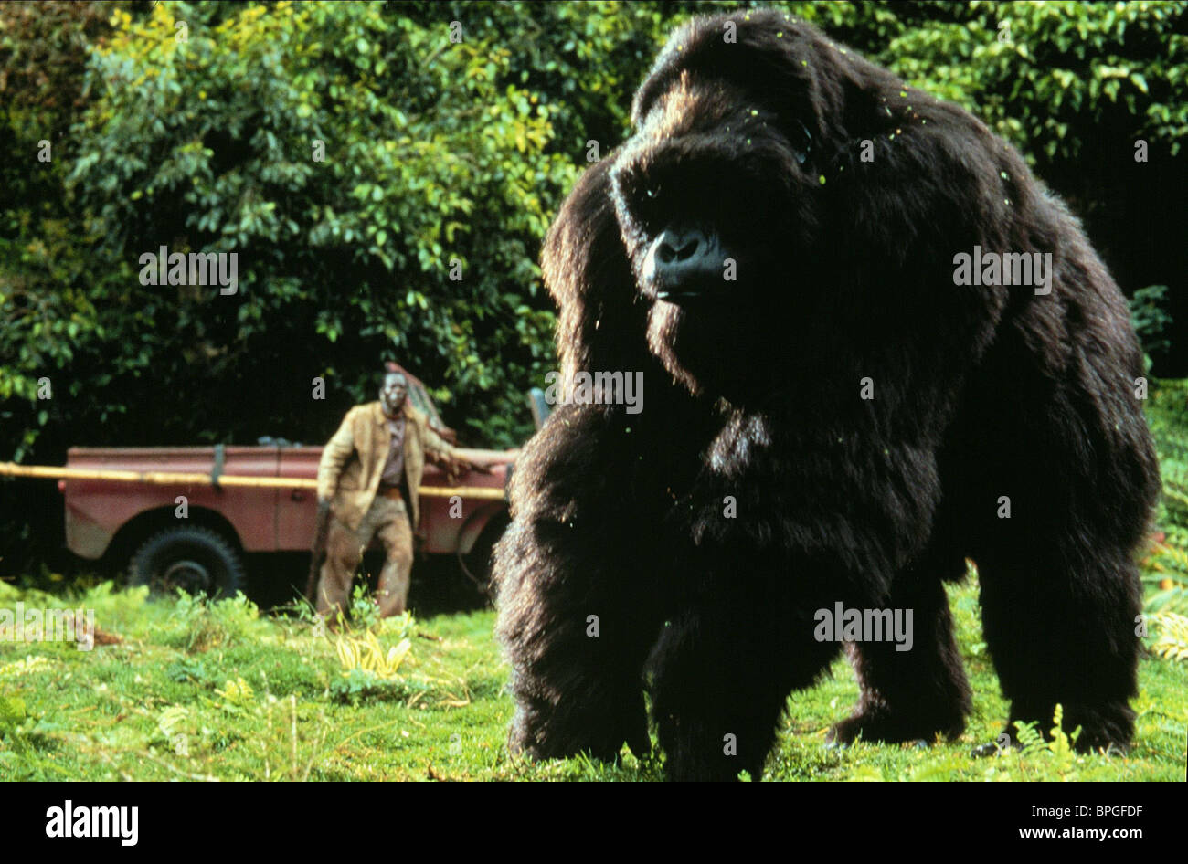 Mighty Joe Young 1949 film  Wikipedia