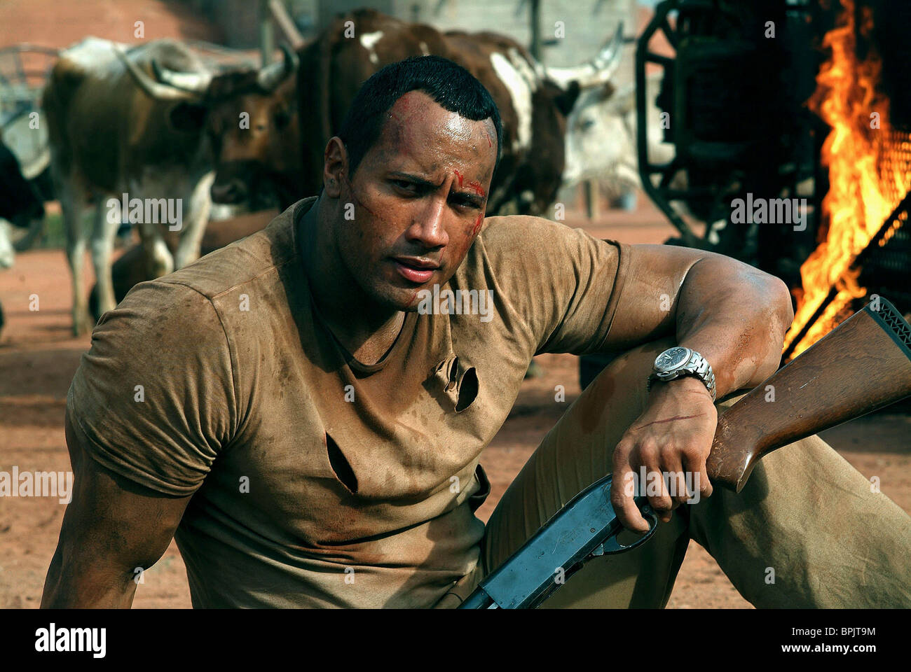 THE ROCK WELCOME TO THE JUNGLE; THE RUNDOWN (2003 Stock ...