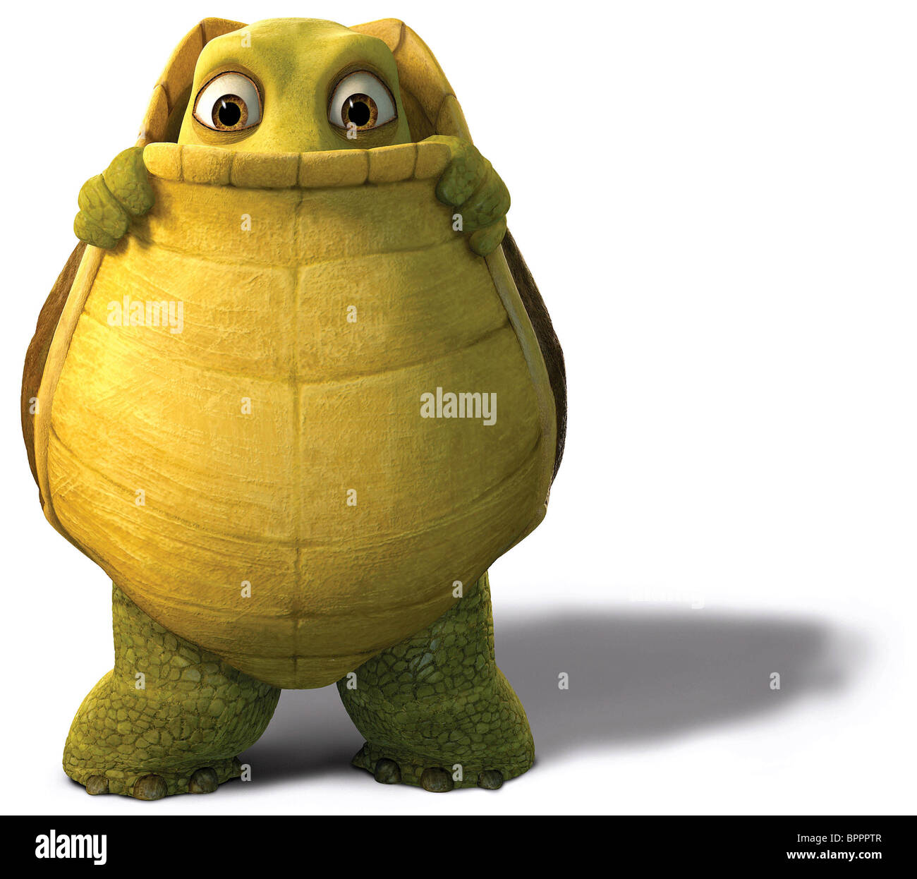 Uncategorized Verne The Turtle verne over the hedge 2006 stock photo royalty free image 2006