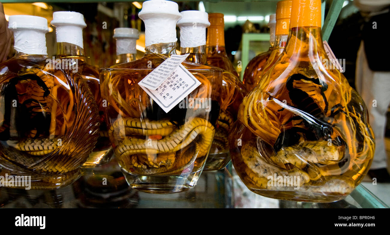 Dare To Drink 'Snake Wine'? Yes, An Alcoholic Beverage Made With ...