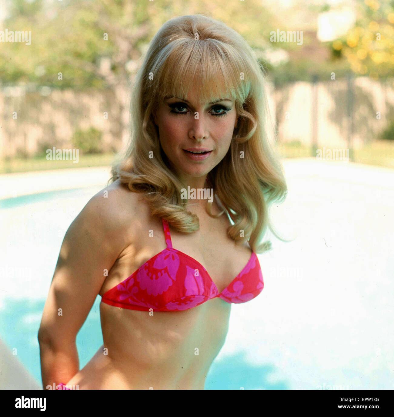 Excitant à Barbara eden boob measurement